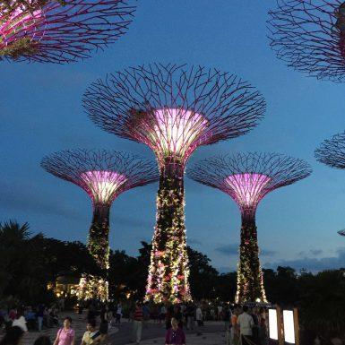 Singapura-15